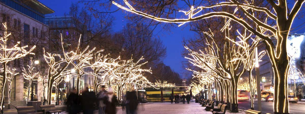 Commercial Chrismas Light Installation. Commercial Christmas Light  Installation